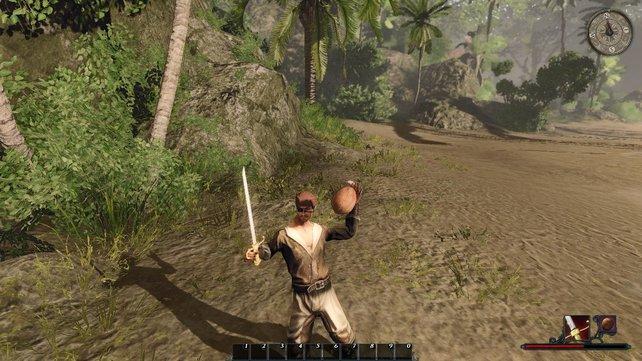 Piraten verschaffen sich im Kampf schon mal Vorteile, indem sie mit riesigen Nüssen werfen.