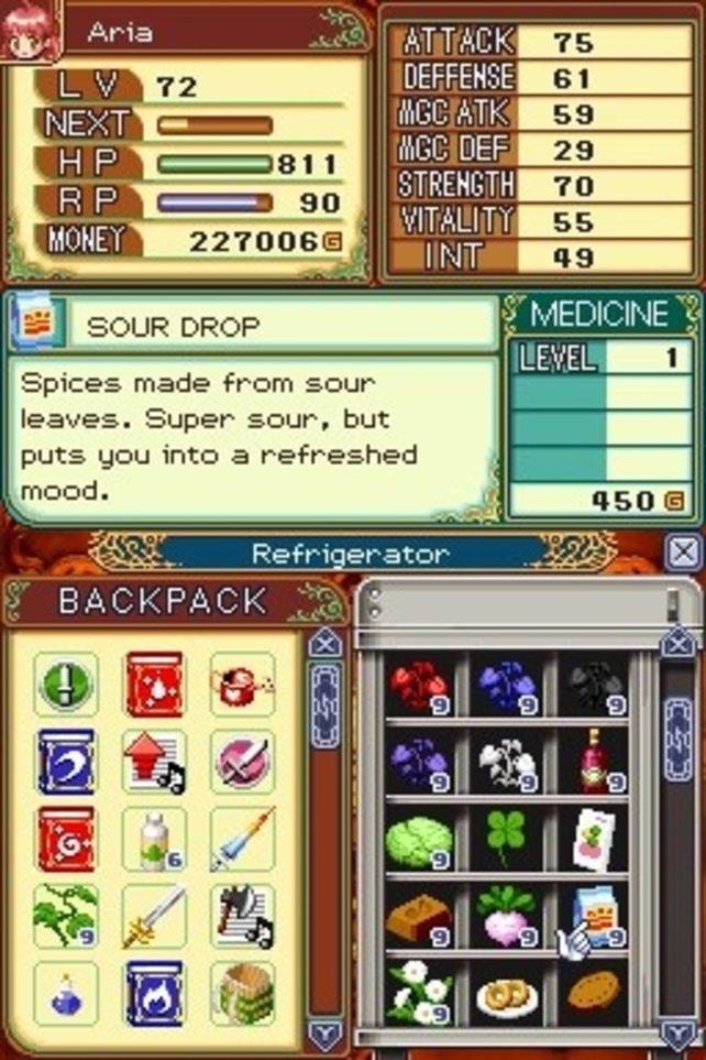 Solche Menüs beweisen, dass Rune Factory 2 mit Sicherheit kein Gelegenheitsspiel ist.