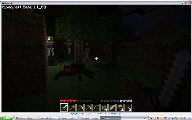 Bei Nacht kommen Monster wie diese Skelette und Spinnen aus ihren Verstecken.