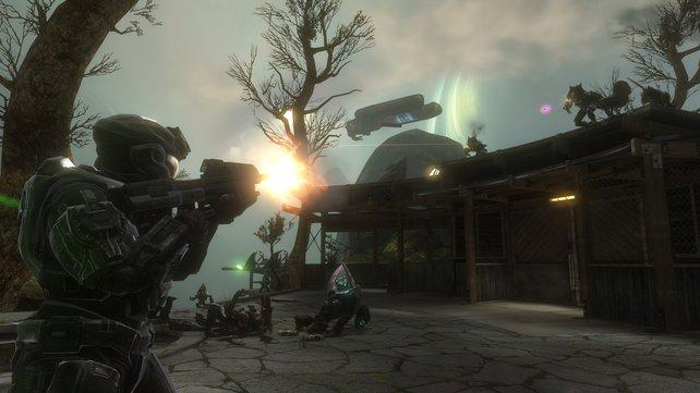 Das Noble-Team gegen die Allianz - eine gewaltige Schlacht beginnt.