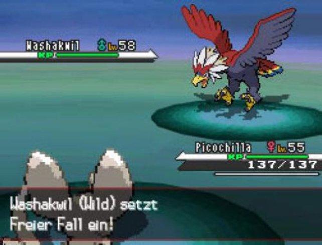 Die Pokémon sind im Kampf toll animiert.
