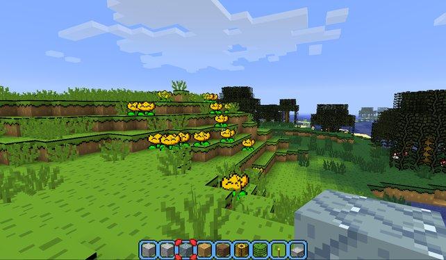 Hier kommen gleich nostalgische Gefühle auf: Super-Mario-World-Grafik in Minecraft.