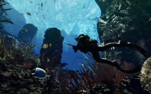 Das Geschehen findet auch unter Wasser statt.