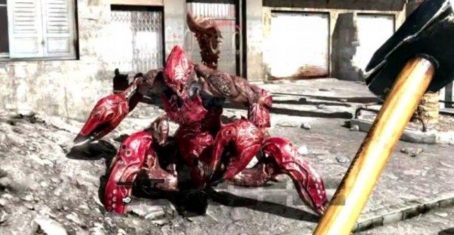 Diesen Skorpion kriegt ihr nicht platt. Nicht mal mit einem Hammer.
