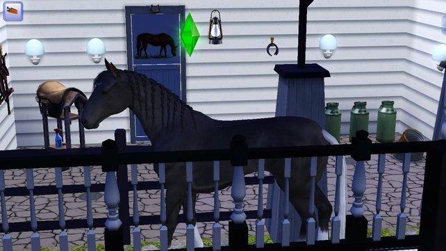 Normale Pferde ... total langweilig im Gegensatz zu denen, die ein Horn haben!