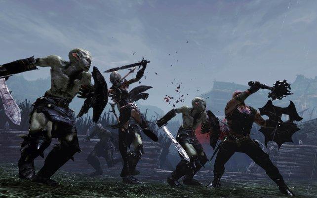 E'lara und Caddoc gemeinsam im Nahkampf gegen einige Wargar.