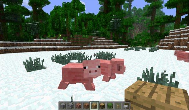 Minecraft: Kein Schwein will heutzutage noch ohne Mods das Spiel daddeln.
