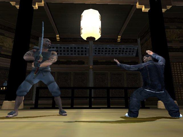 Verschieden Kampfstile können erlernt werden
