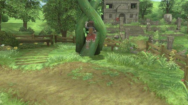 Diese Bohnenranke ist der Aufgang zur fliegenden Steininsel.