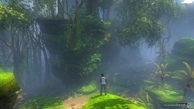 Der idyllische Jungle läd ein zum verweilen.