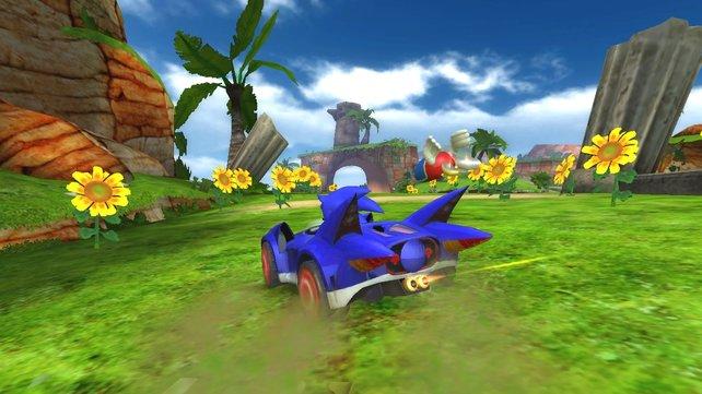 Sonich macht eine Fahrt ins Grüne.