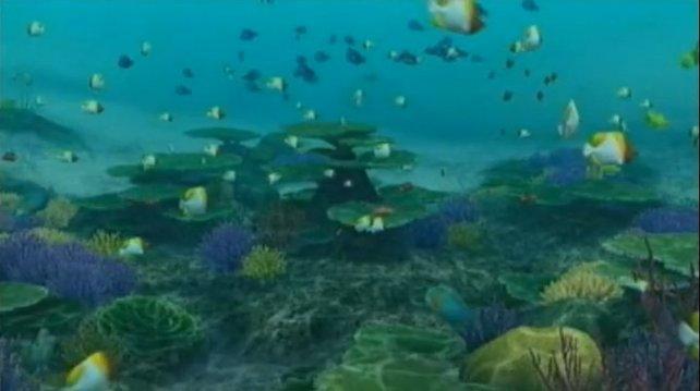 Ob Endless Ocean eins oder zwei: Fische sind immer mit dabei!