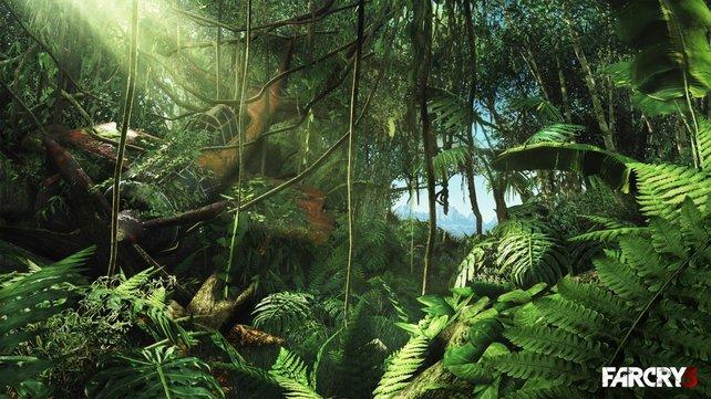 Eines der ersten Bilder von Far Cry 3, das Ubisoft auf der E3 veröffentlicht hat.