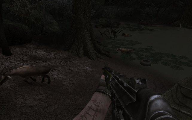 Unser erstes Tier im Spiel: eine Ziege.