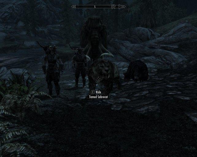 In Tytanis dürft ihr auf Bären reiten. Der Entwickler plant, auch noch Drachen einzubauen.