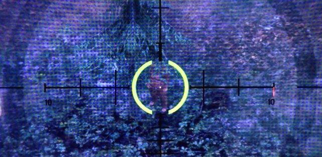 Und es gibt ihn doch! Bigfoot versteckt sich in GTA 5.