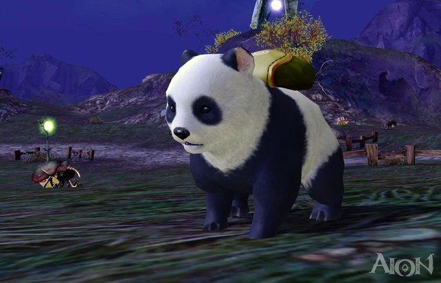 Haustiere können in Aion mehr als überall anders: Spieler können viele Interaktionen nutzen.