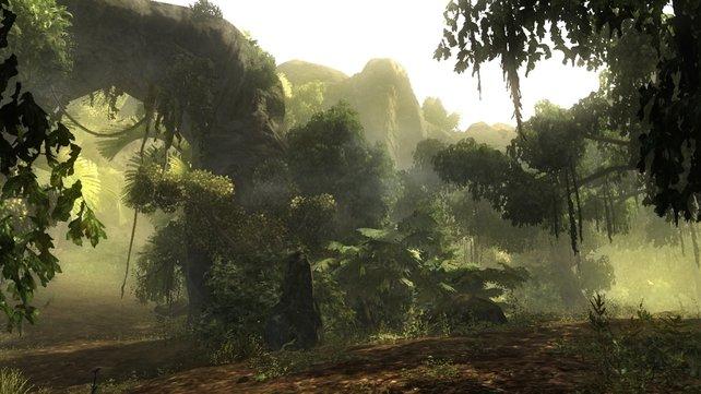Die Spielwelt bietet unglaublich viele Details und ist wundervoll gestaltet.