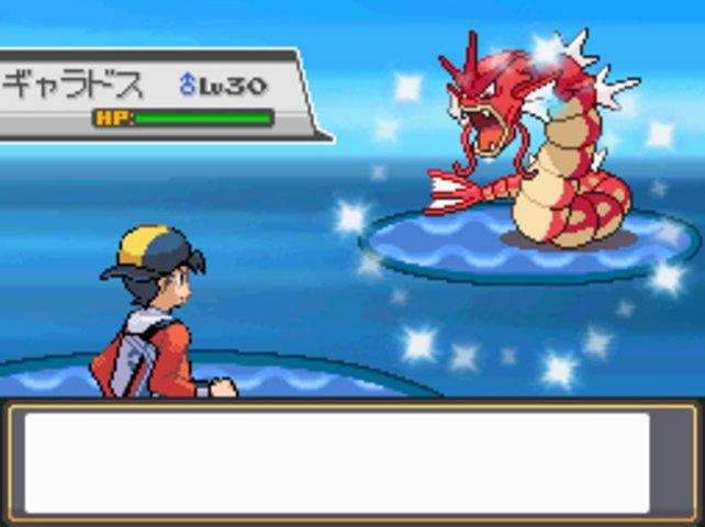 Unter den 251 Pokémon befinden sich auch noch Shiny Pokemon, die in keiner Sammlung fehlen dürfen.