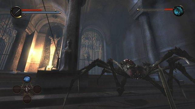 Gelegentlich gibt es Kämpfe gegen größere Gegner wie diese Spinne