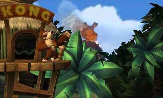 Niemand nimmt Donkey Kong ungestraft seine Bananen weg, niemand!