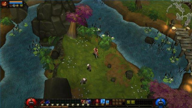 Torchlight 2 ähnelt Diablo 3, ist jedoch in vielen Gebieten deutlich bunter.