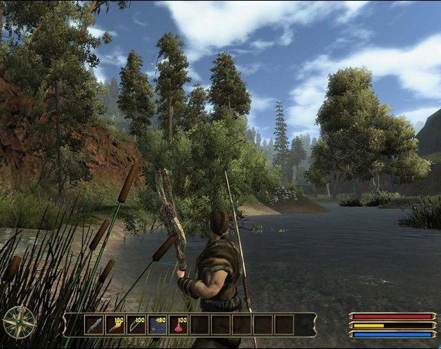 Auf Jagd im Uferdickicht...