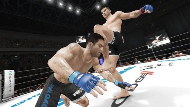 Im PRIDE-Modus geht es härter zu als in der UFC. Kein Erbarmen - auch nicht für Gegner, die am Boden liegen.