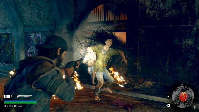 Wenn ihr ein Nest in Brand setzt, kommen aggressive Freaker herausgestürmt – haltet euch bereit!