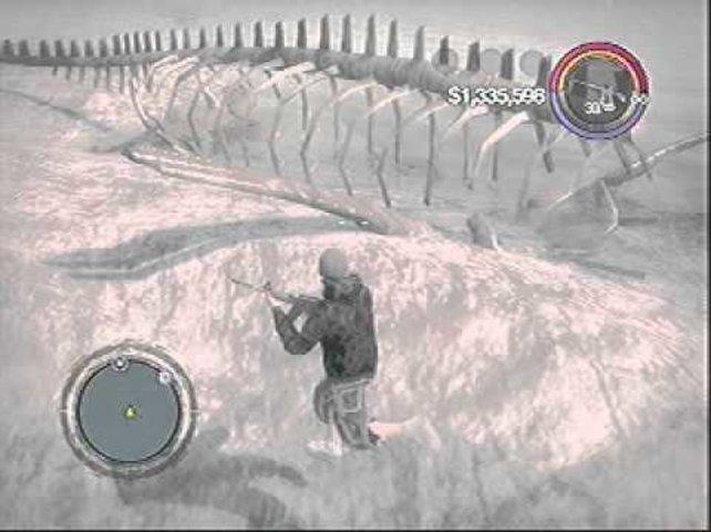 Das mutmaßliche Skelett von Nessie ist sehr groß und überall auf der Insel Bone Island zu finden.