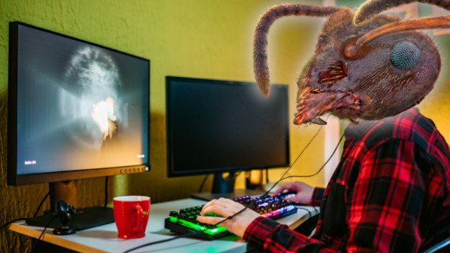 Ameisen und Gaming passen nicht besonders gut zusammen. (Bildquelle: I love nature / Getty Images, urbazon / Getty Images)