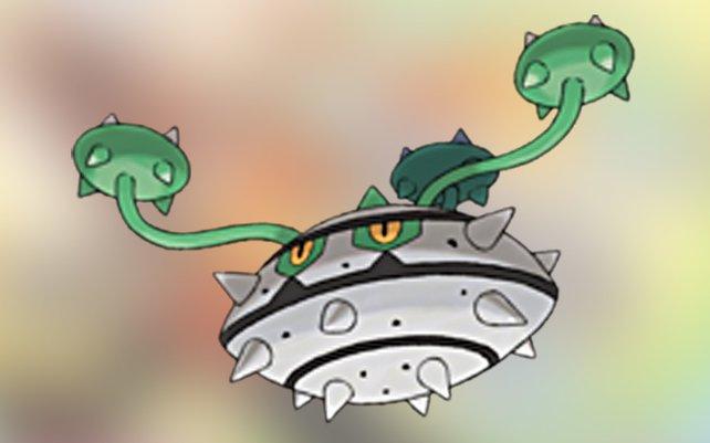 Jedem Gegner ein Dorn im Auge: Tentantel.