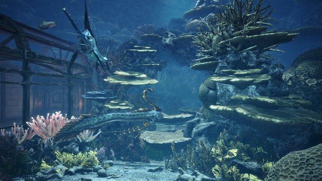Eure gesammelten Fische könnt ihr im Aquarium in eurem Zimmer ausstellen.