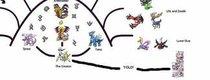 Der große Pokémon-Stammbaum: Von Arceus bis Arkani