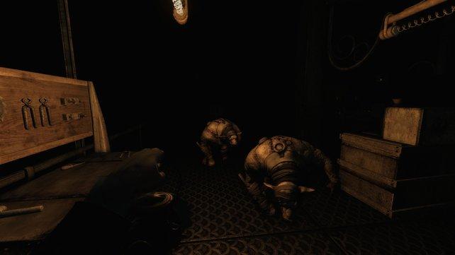 Vorsicht bei den patrouillierenden Schweinen - die machen euch fertig, wenn ihr sie lasst.