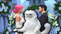<span>Die Sims 4:</span> Spieler erhält schlechtesten Hochzeitsfotografen