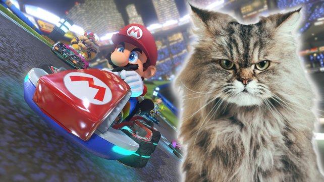 Katzen machen Mario Kart unsicher. Bildquelle: Getty Images/ SensorSpot