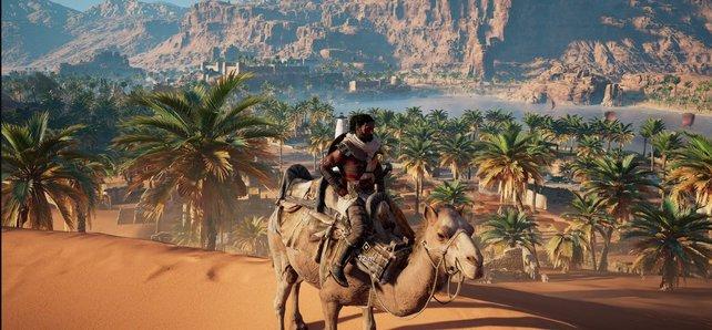 AC Origins: Entspannt dieses Wochenende doch einfach mal auf dem Rücken eines Kamels, beim Ubisoft Free Weekend.