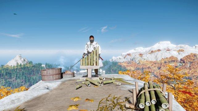 In diesem Guide zeigen wir euch die Fundorte aller 16 Bambusstände in Ghost of Tsushima, sodass ihr eure Entschlossenheit erhöhen könnt.