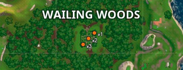 Die Fundorte der Truhen im Irrgarten von Wailing Woods.