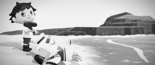 """""""Es bringt Unglück, einen Seevogel zu töten."""""""