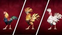 Far Cry 6: Fundorte aller 19 Hähne für Hahnenkampfarena