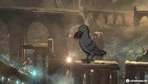Demon's Souls: Sparkly, die Krähe finden und Items zum Tauschen kennen