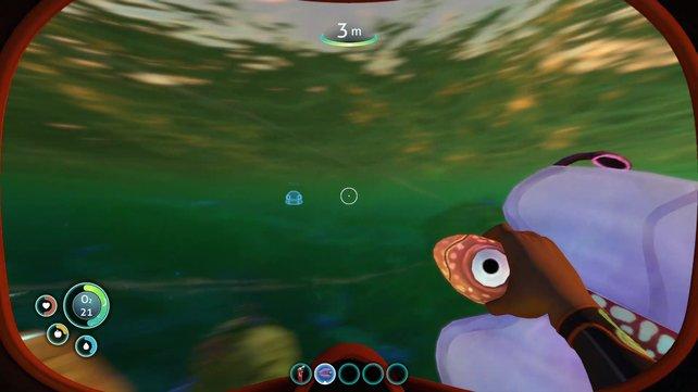 Blasenfische sind eine wichtige Ressource für den Start von Subnautica.