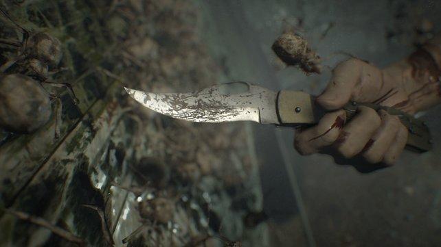 Mit dem Messer gegen Käfer.