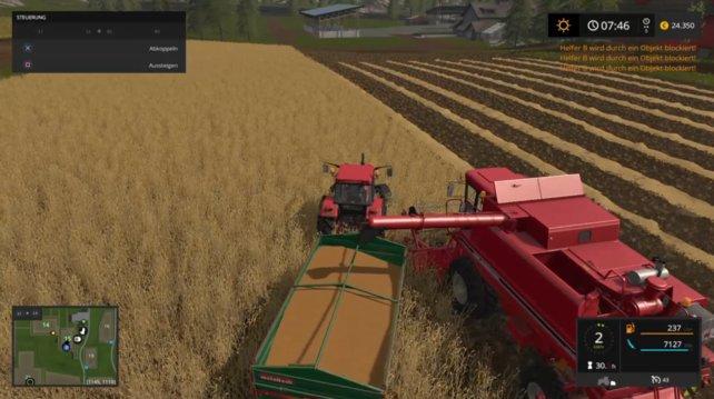 Sorgt für ein kurzzeitiges Überangebot eines landwirtschaftlichen Produktes, zum Beispiel Weizen oder Kartoffeln.