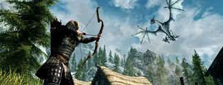 Panorama: The Elder Scrolls 5 - Skyrim: Schöne Konsolen-Skin für Nintendo Switch