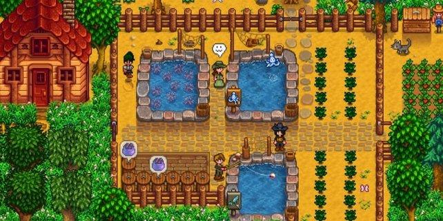 Mit dem Update 1.4 könnt ihr Teiche auf eurem Hof errichten.