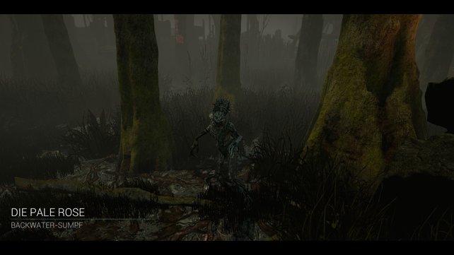 Der Backwater-Sumpf ist die neue Karte, die mit der Hexe ins Spiel integriert wurde. Hier fühlt sich the Hag wie Zuhause...