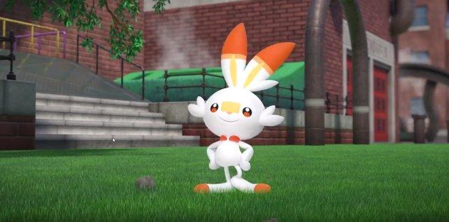 Gestatten: Hopplo, eines der neuen Starter-Pokémon in Schwert und Schild.